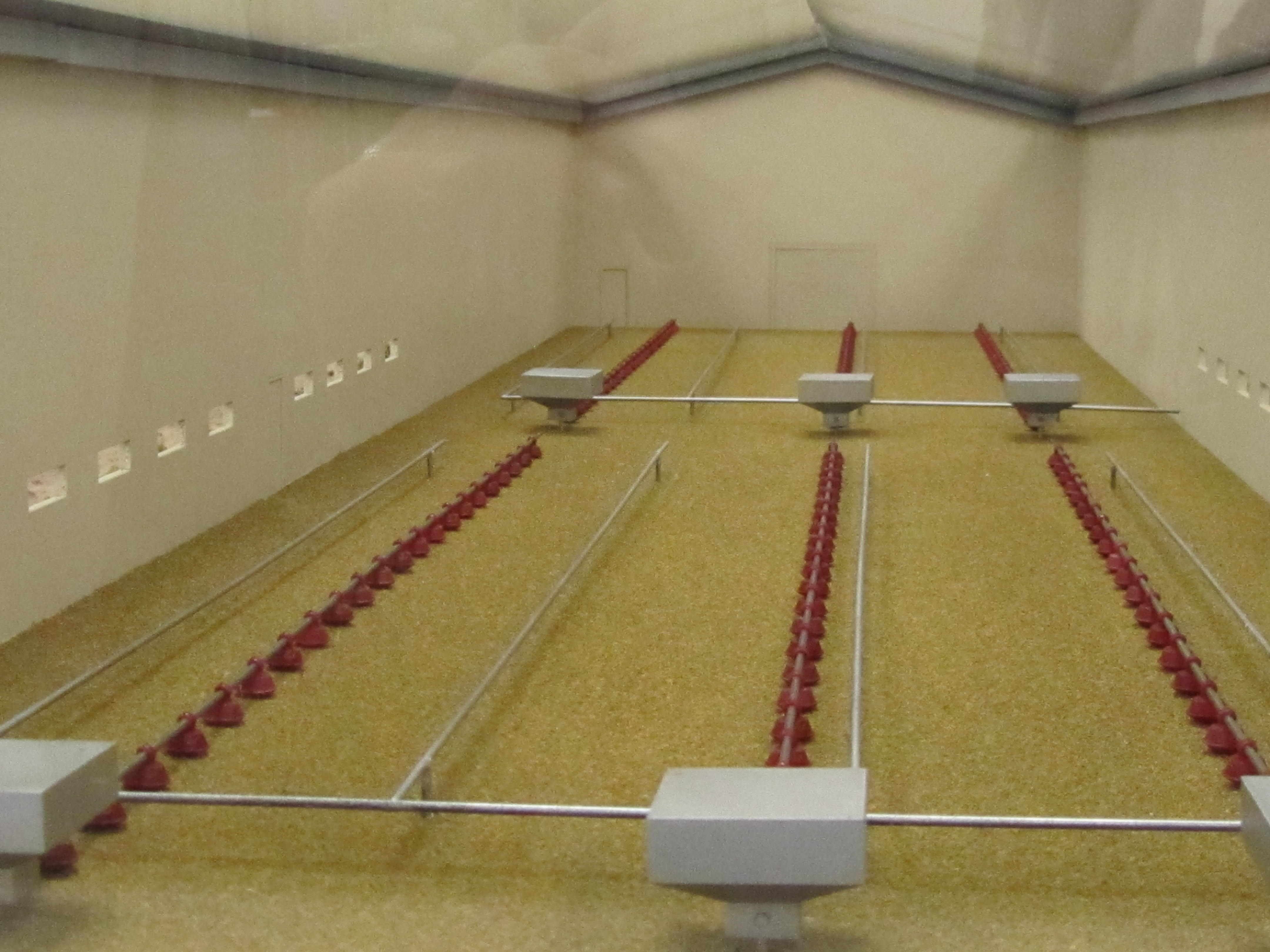 poultry house trade show model
